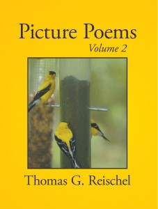picture-poems-2-front